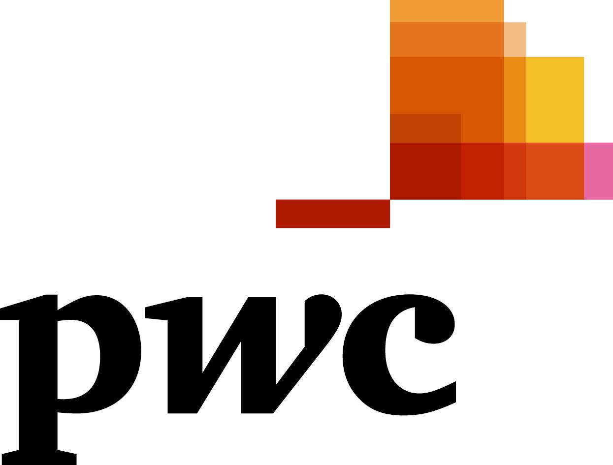 PwCコンサルティング合同会社ロゴ